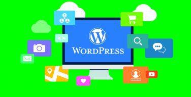 Plugin WordPress Terbaik yang Wajib Anda Install