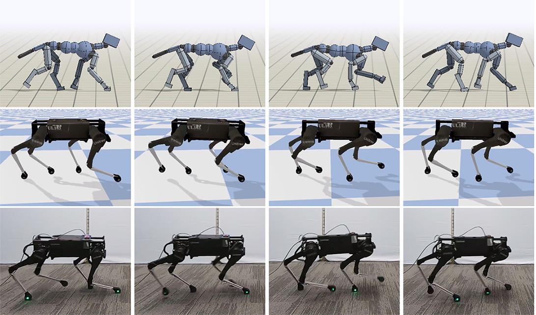 dog robotic