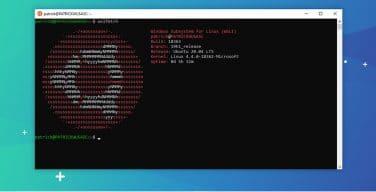 Ubuntu 20 04 Sekarang Tersedia dari Microsoft Store