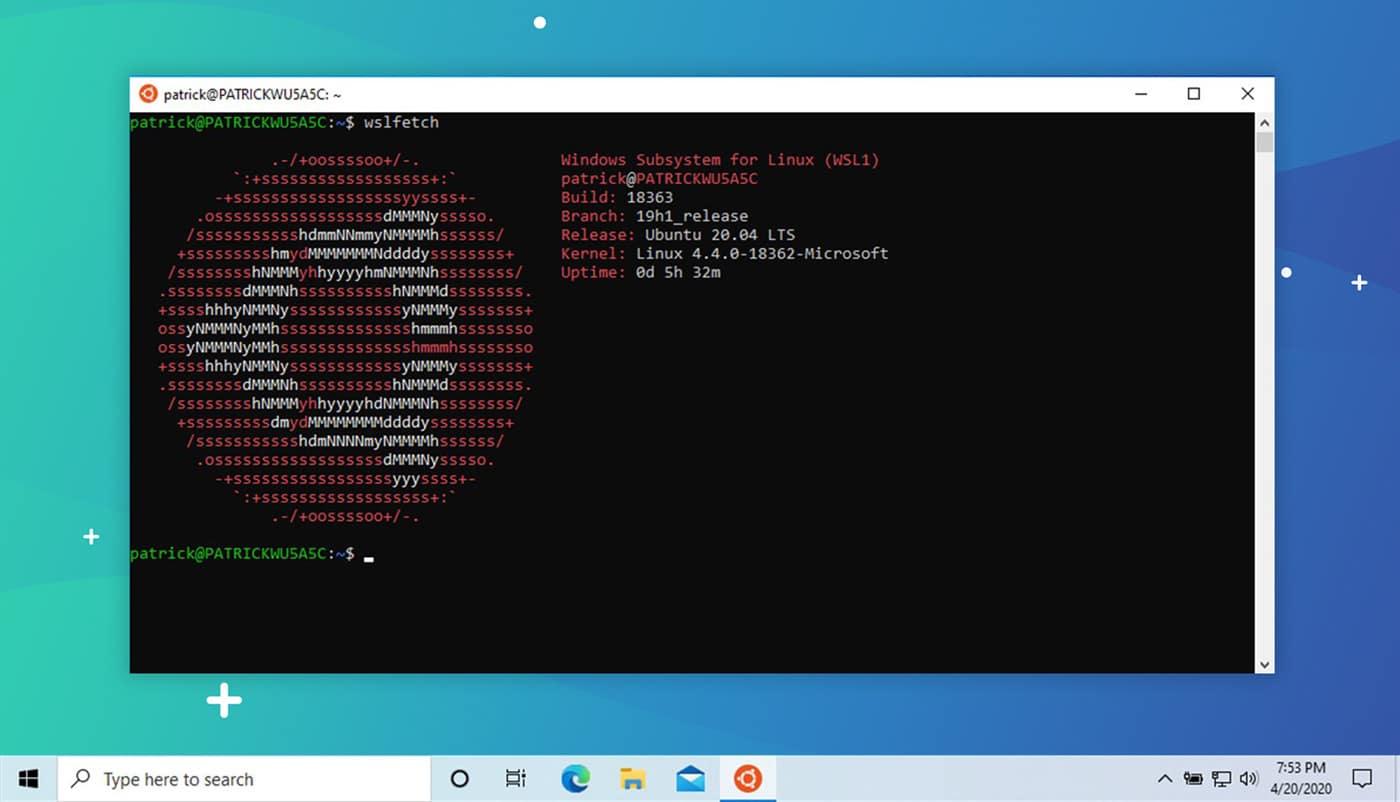 WSL Ubuntu 20.04 LTS