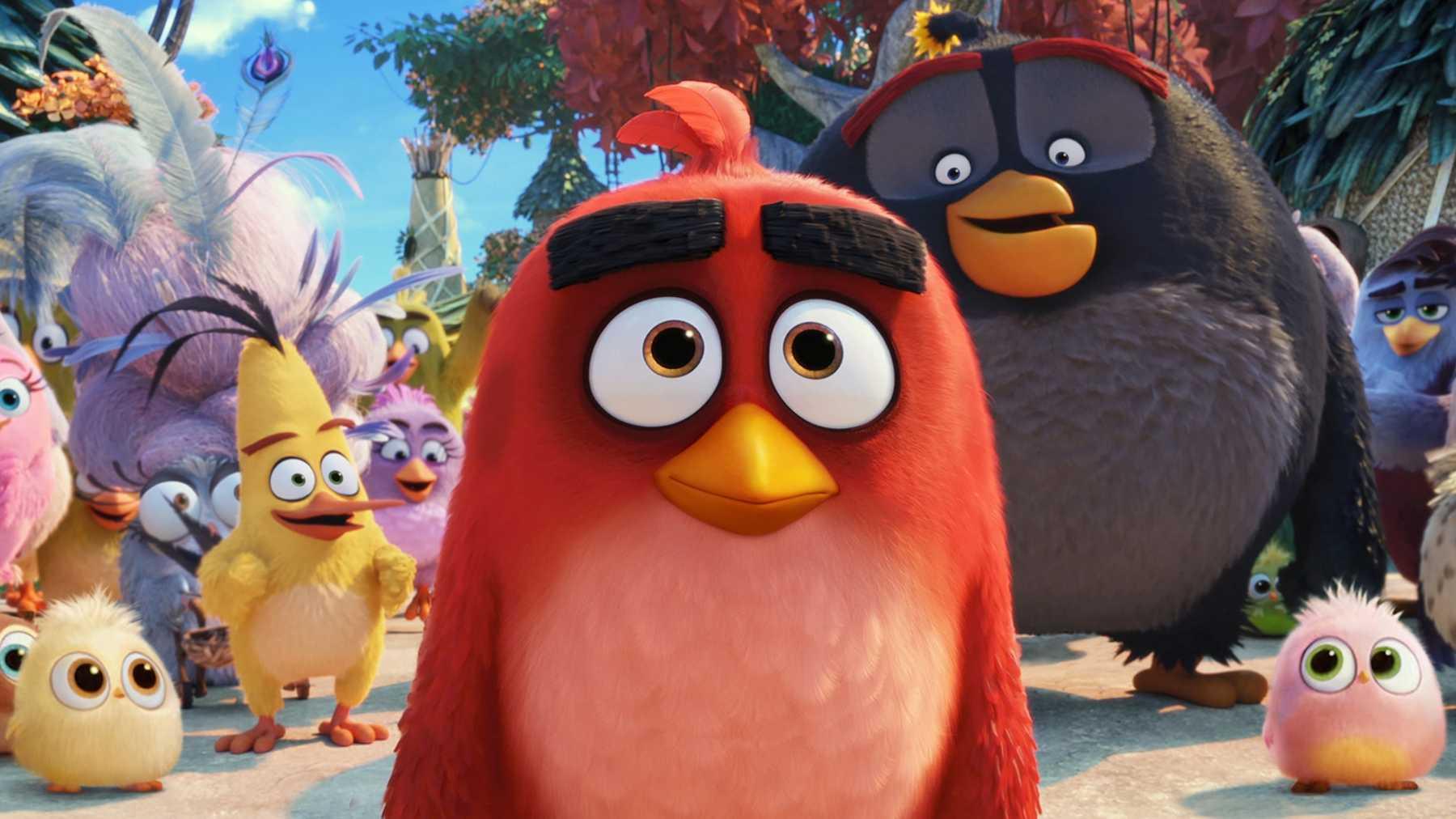 Popularitas Angry Birds