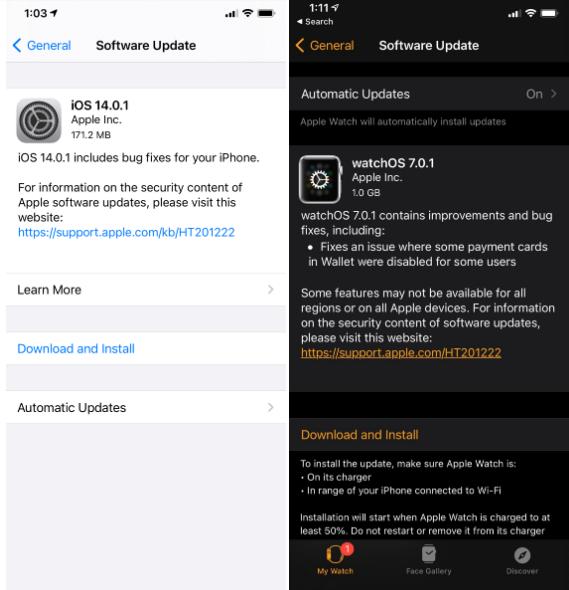 iOS 14.0.1