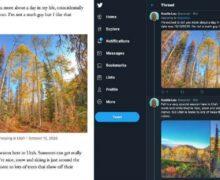 WordPress Tools Mengubah Posting Blog Menjadi Tweetstorm