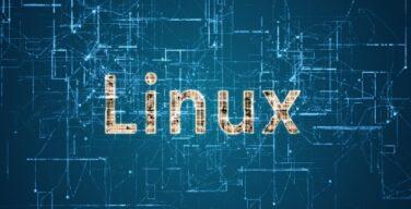 Google Ketakutan dengan Kerentanan Linux Baru