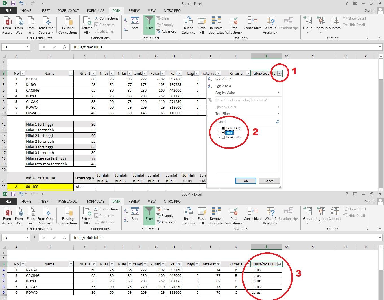 mencari data kelulusan di excel dengan filter